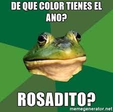 Foul Bachelor Frog Meme Generator - de que color tienes el ano rosadito foul bachelor frog meme