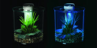 marina 360 aquarium 10l co uk pet supplies