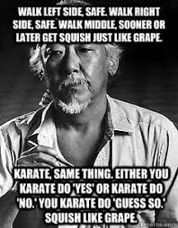 Karate Memes - whoever said diamonds are a girl s best friends never learned