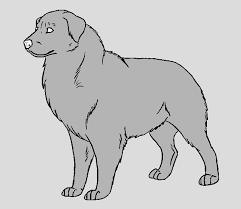 dog template australian shepherd by narufreak123 bases on deviantart