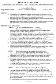 professionally written resume samples professional profile resume