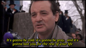 Bill Murray Groundhog Day Meme - the genius of groundhog day will teach you the mastery of life