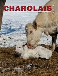 charolais journal feb 2017 by edje issuu
