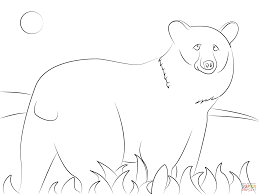 american black bear coloring page free printable coloring pages