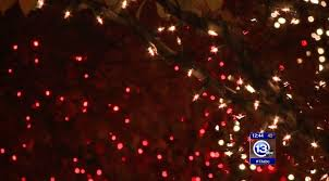 when does the lights at the toledo zoo start last days to vote the toledo zoo s lights before christmas 1