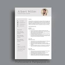 Business Consultant Sample Resume by 21 Best Cv Word Templates Modern Images On Pinterest Cv