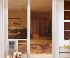 Vinyl Pet Patio Door Sliding Door Door Insert Diy Tag Unforgettable Sliding