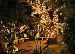 outdoor tree lights for summer why you need outdoor lighting for your next summer celebration