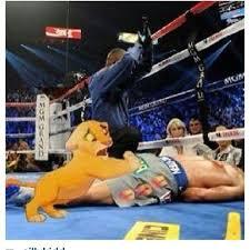 Pacquiao Knockout Memes - manny pacquiao knockouts 10 manny pacquiao knockout jokes photos