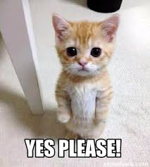 Yes Please Meme - meme creator yes please meme generator at memecreator org