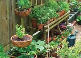 garden ideas front patio ideas patio decor container vegetable