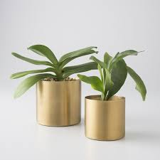 best 25 brass planter ideas on pinterest plant decor indoor