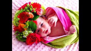 baby flowers flower baby images flowers ideas