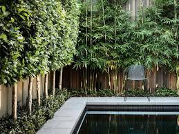 believes that landscaping best florida ideas on pinterest