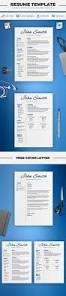Best Resume Font Word by 23 Best Professional Resume Templates Images On Pinterest