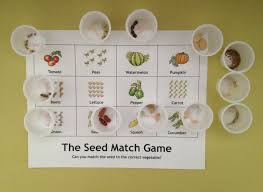 seed match game this is a good activity for kids gardening clubs