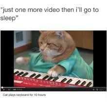 Cat Playing Piano Meme - just one more video then i ll go to sleep cat plays keyboard for 10