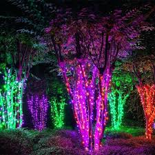how to string lights on a tree tree string lights trees wrapped with to create an electric forest