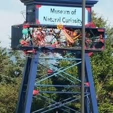 museum of curiosity 57 photos 46 reviews museums