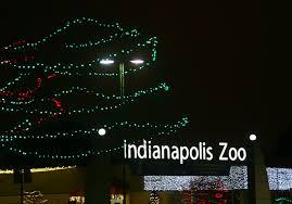 christmas lights at the zoo indianapolis review christmas at the indianapolis zoo