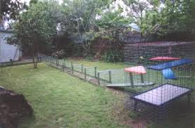 How To Build Backyard Fence Cat Enclosures Outdoor Cat Runs Many Cat Enclosure Pictures