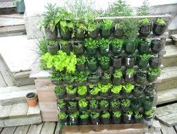 Ideal Vegetable Garden Layout Balcony Vegetable Gardening Ideas Best Balcony Garden Ideas