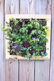 How To Build A Vertical Garden - how to make a vertical garden get it online joburg west