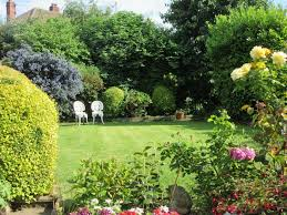 Privacy Garden Ideas Breathtaking Trees For Garden Privacy Pictures Best Ideas