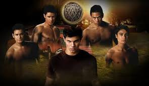 twilight series images the wolfpack wallpaper and background