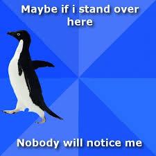 Socially Awkward Penguin Memes - 152 best socially awkward penguin images on pinterest socially