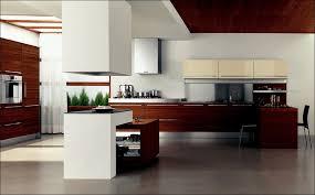 Trend Kitchen Cabinets Kitchen Kitchen Cabinet Trends 2017 Kitchen Design Trends 2018