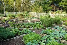 inspiring potager garden design backyard landscape ideas