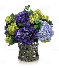 flower arrangement pictures images and stock photos istock