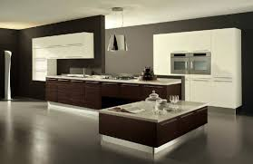 modern sleek kitchen design kitchen kitchen trends contemporary maple kitchen cabinets