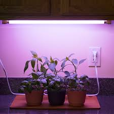 t5 grow light bulbs linkable t5 grow light fixture with l fixture with fluorescent