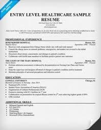 Resume Service Chicago Best Academic Essay Writing Websites For Gcse Mathematics