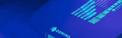 domino digital printing