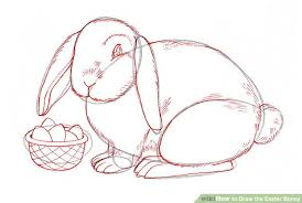 3 ways draw easter bunny wikihow