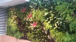 Wall Garden Kits by Vertical Garden Kits Living Wall Indoor Green Beet Art Loversiq