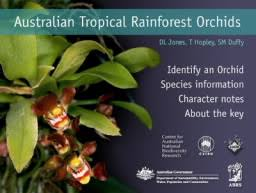 Tropical Rainforest Plant List - online keys to australian tropical rainforest plants jcu australia