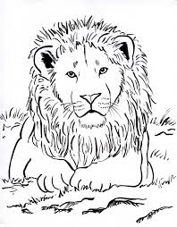 week 3 upside lots animal coloring pages lion coloring