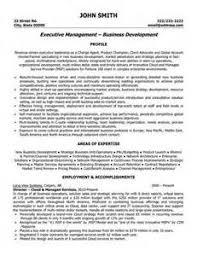 sample resume executive vice president sample resume executive vice president ayo ngaca