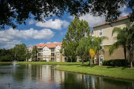 2 Bedroom Apartments Near Usf Portofino Apartment Homes Rentals Tampa Fl Apartments Com