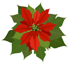 christmas poinsettia pictures free download clip art free clip