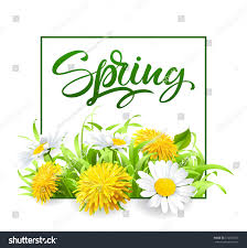 inscription spring time on background spring stock vector