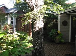 Backyard Cottage by The Garden Cottage Bungalows For Rent In Burlingame California
