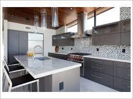 kitchen hidden cabinet door prefab kitchen cabinets raising