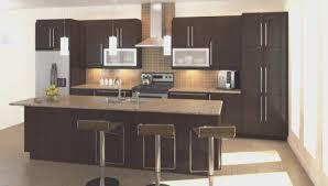 kitchen best kitchen cabinets depot home design wonderfull