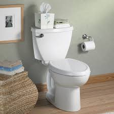 Fancy Bidet 10 Features To Avoid When Buying A New Toilet