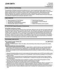 Business Development Consultant Resume Samples   VisualCV Resume         Travel Agent Resume Examples Corporate Travel Consultant Resume Sample consultant sample resume leasing consultant resume example